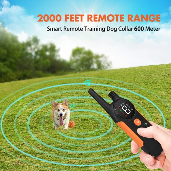 Pet Trainer Waterproof Remote Electric Control Pet Dog Training Rechargeable Shock Collar for Dog Training/Popular