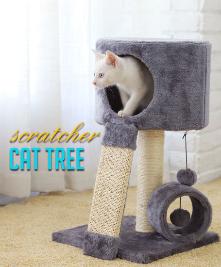 Luxary Cat Tree And Furniture, Eco Cat Furniture