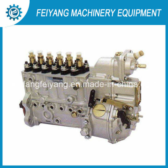 Longbeng Fuel Injection Pump Bh6p120015 for Weichai Engine Wd615