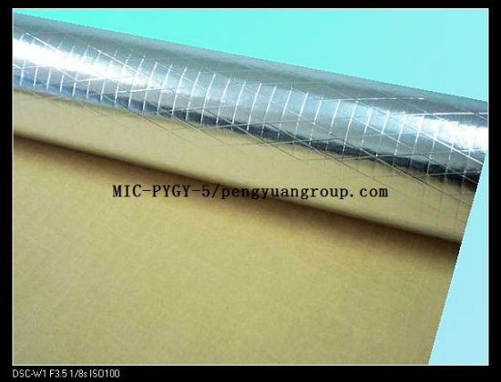 Embossed Foil XPE Thermal Break Insulation Material pictures & photos
