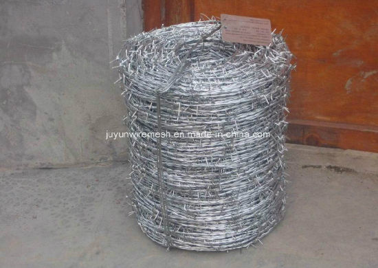Galvanized Barbed Wire Bwg12*Bwg12 Hot Sale with Certification (Factory) pictures & photos