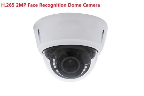 1080P IR Infrared Face Recognition Access Control IP Detector Camera