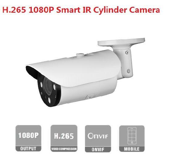 Fsan H. 265 2MP IR Infrared Security Surveillance Network Bullet Camera