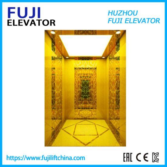 FUJI Cheap Small Villa Panoramic/Observation Glass Home Passenger Elevator