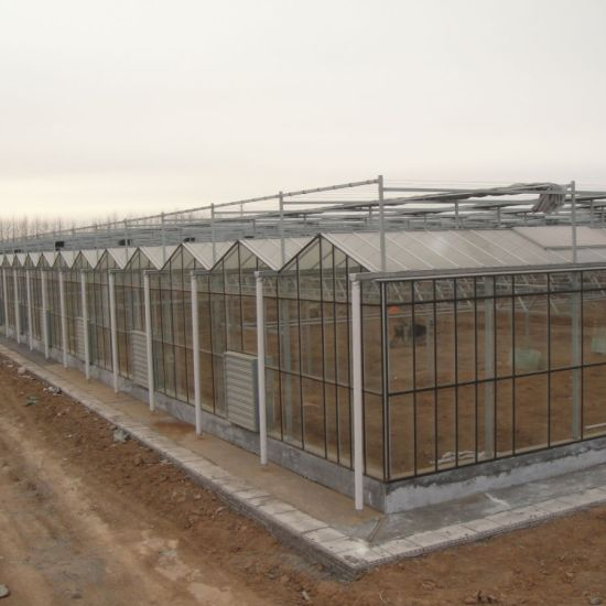 Hot DIP Galvanized Steel Glass Greenhouse for Flowers Vegetables