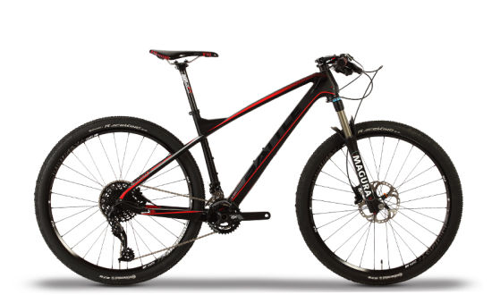 Ultra Light Carbon and Magura with Sram Drive-Train and Continental Wheels Mountain Bike / Mountain Bicycle (JF 870)
