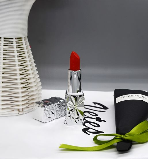 OEM Cosmetics Makeup Long Lasting Lipgloss Ultra Shimmer Glitter Lipstick