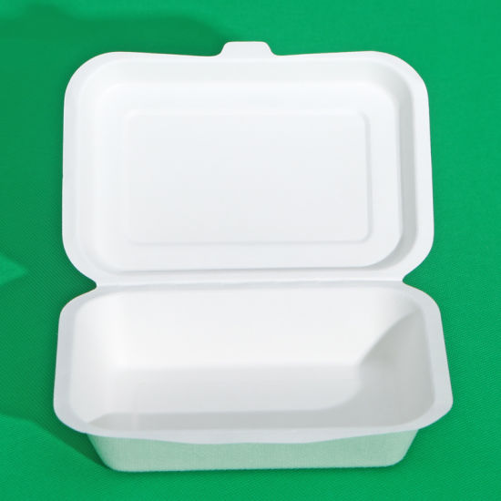 Double Wall OEM Disposable Lunch Box pictures & photos