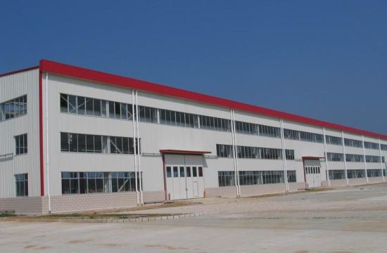 Professional Steel Structure Warehouse (SSWW-16018)