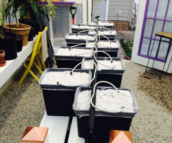 Commercial Complete Hydroponic Growing Systems Dutch Bucket Drip Irrigation System