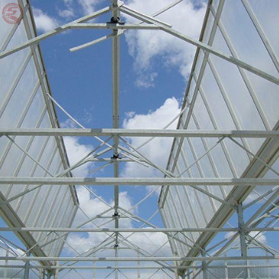 Polyethylene/Film Green Houses Hydroponics System for Vegetables/Flowers/Fruit