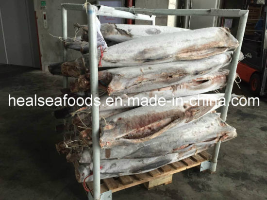 New Landing Sea Frozen Fish Black Marlin on Sale 25kg up