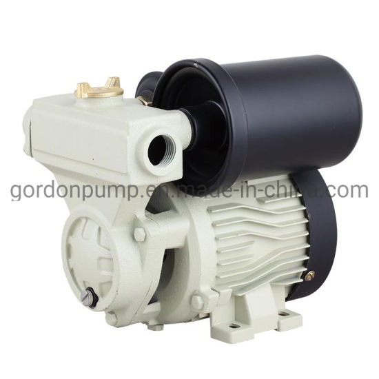 Ga101 Small Size 0.5HP Automatic Self-Priming Vortex Water Pumps pictures & photos