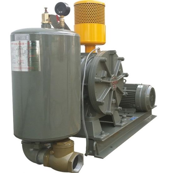 Dn80 Rotary Air Blower, Low Noise Waster Water Treatment Blower pictures & photos