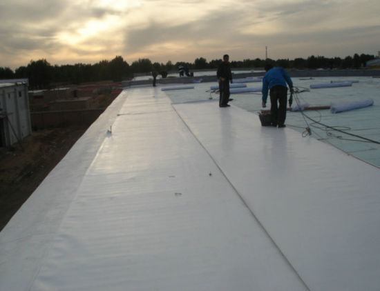 China Garage Tpo Waterproof Sheet Roofing Material With