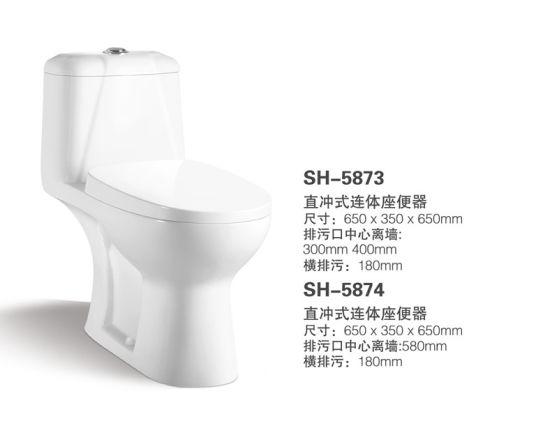 One Piece Toilet Water Closet (NJ 5873)