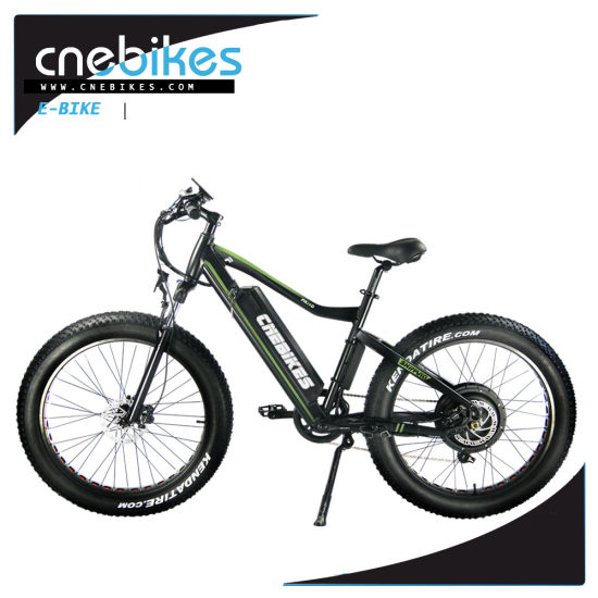 China Snow/Beach/Mountain Type 26*4.0 Electric Fat Tire Bicycle ...