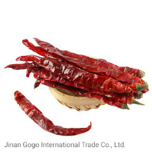 New Crop Good Quality Dried Hot Red Chilli Tianying Chilli Chaotian Chilli pictures & photos