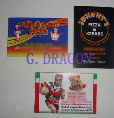 Offset Printing Paper Menu or Flyer with Magnet (GD-MP001) pictures & photos
