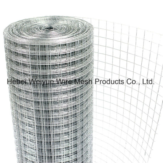 China High Quality Stainless Steel Square Welded Wire Mesh - China ...