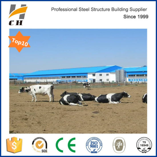 Low Cost Exhaust >> Low Cost China Supplier Prefab Steel Structure Cow Shed With