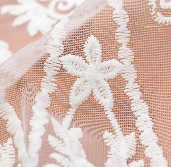 Mesh Scalloped Trimming Lace with Embroidery pictures & photos