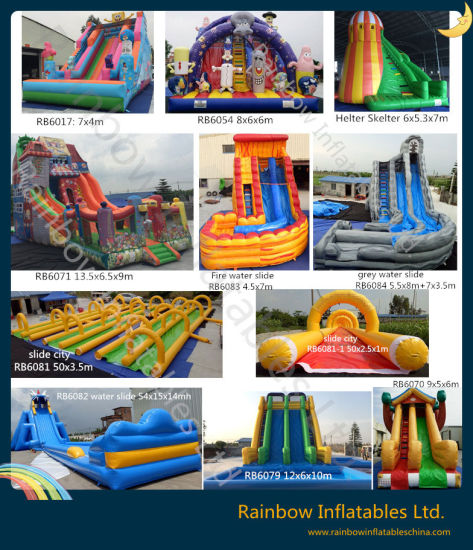 New Design Giant Inflatable Super Water Slide for Sale (RB6079) pictures & photos