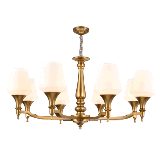 Good Quality Metal Chandelier Lighting (SL2284-6) pictures & photos