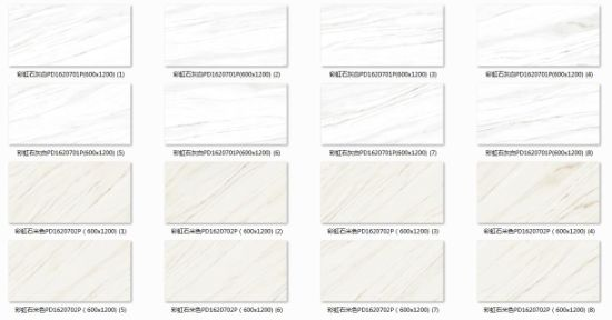 Decorative Material 24X48′ Full Body for Project (PD1620701P) pictures & photos