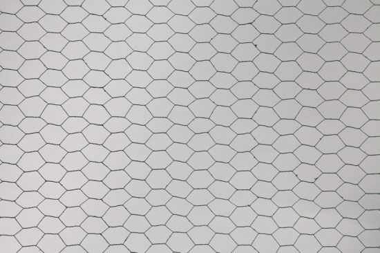 Wholesale Hexagonal Galvanized Wire Mesh for Chicken