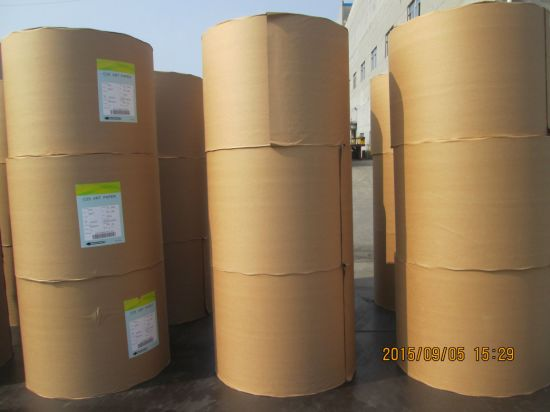 Food Grade PE Coated Paper, Single PE, Double PE, Cup Paper