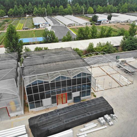 High Efficient Multi-Span Glass Greenhouse for Anti-Season Vegetable