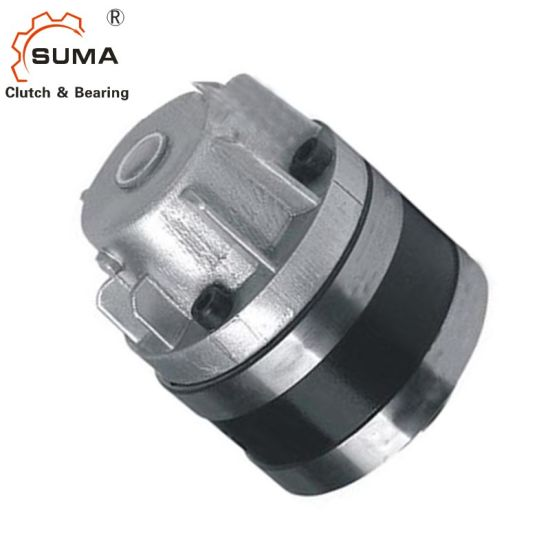 Mg-R Series Cam Clutch Used for Backstop pictures & photos