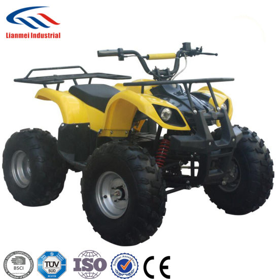 Adult Electric ATV 1000W for Sale with Shaft Drive pictures & photos