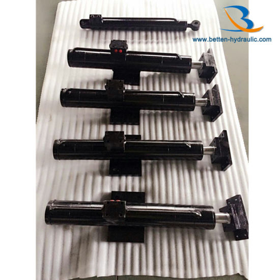Hydraulic Oil Cylinder for Transport pictures & photos