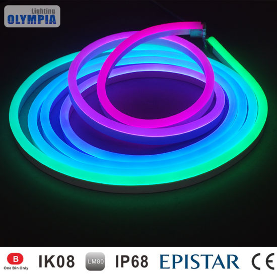 the latest ab40a 7ec5b DIY 24V Color Changing LED Neon Rope Light