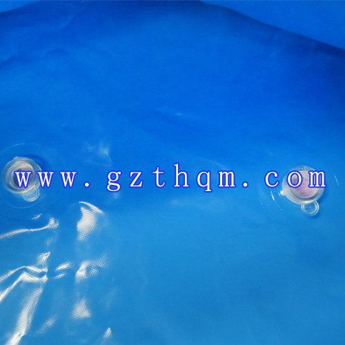 Water Outdoor Trampoline Park Slide Octopus Inflatable Pool/Giant Inflatable Pool pictures & photos