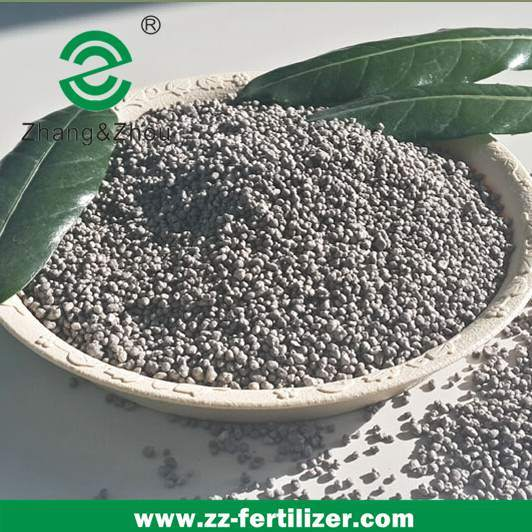 Granular Phosphate Fertilizer Tsp (Triple Superphosphate) (P2O5 46 %) pictures & photos