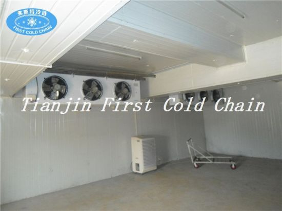 Cold Storage Cold Room Walk in Refrigerator Freezing pictures & photos
