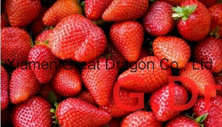 Individual Quick Freezin-IQF Organic Strawberry