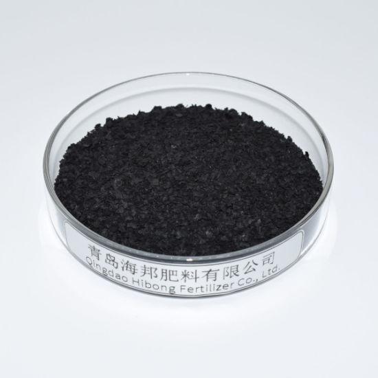 Seahibong Seaweed Extract Evergrow Organic Fertilizer