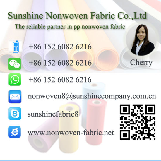 PP Nonwoven Spunbonded Fabric for Furniture Upholstery pictures & photos