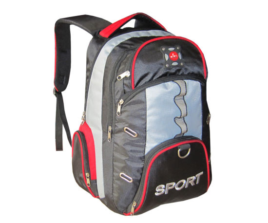 Cool Professional Popular Traveling Backpacks for Men and Women (BBP10541) pictures & photos