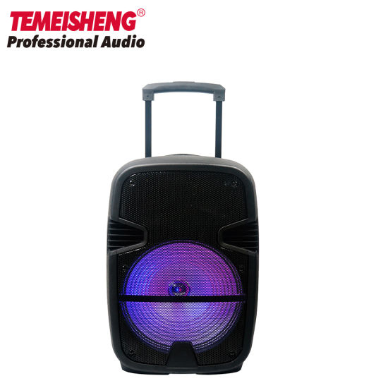 12 Outdoor Portable Rechargeable Trolley Karaoke Speaker