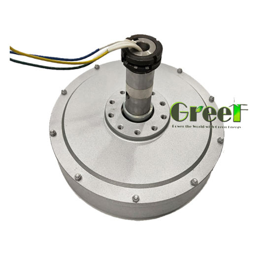 China 1kw Inner Rotor Axial Flux Coreless Generator Price