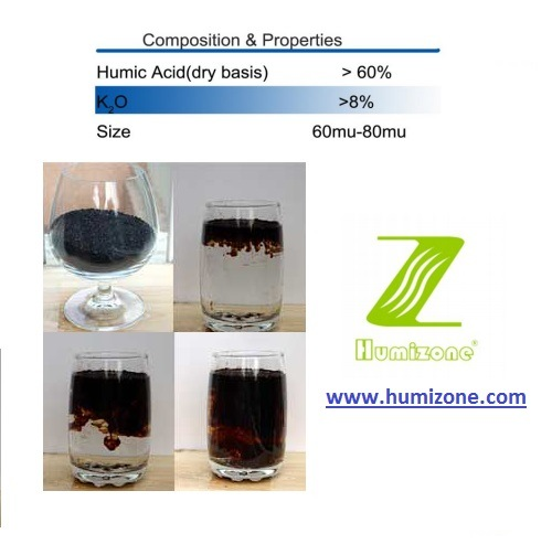 Humizone Organic Fertilizer From Leonard: Potassium Humate 70% Powder (H070-P) pictures & photos