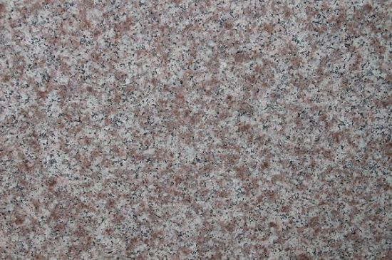 Granite Tile /Slab for Flooring /Counter Top pictures & photos
