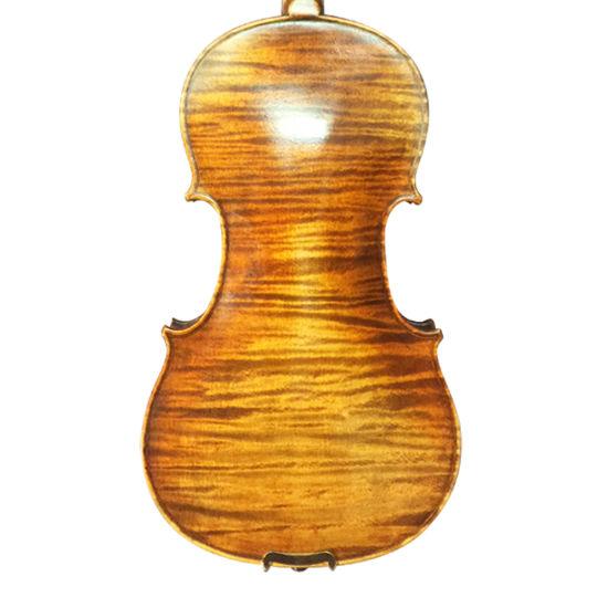 Master Violin with Advanced Violin Case, Free Violin Bow