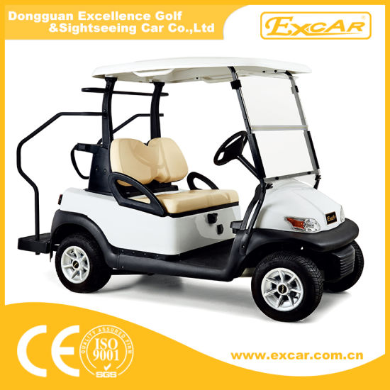 China Hot Sale 2 Person Mini Electric Golf Buggy - China