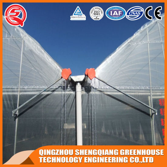 Vertical Farming Companies High Tunnel Strawberry/Garden Greenhouse for Sale